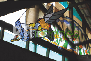 Ezmu Glass Gallery