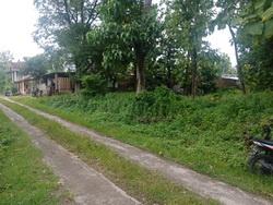 Tanah Pajangan